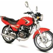 Мотоциклы Allegator YH125-C фото