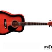 Акустическая гитара Tenson D1 (RSB) фото