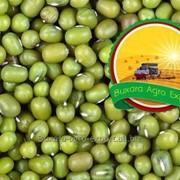 Маш некалиброванный Bukhara Agro Export фото