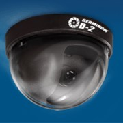 Черно-белая купольная камера видеонаблюдения Germikom D-2 фото