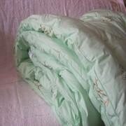 Одеяло с бамбуковым наполнителем Асика фото