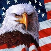 Поможем оформить визу США в течение одной недели фото