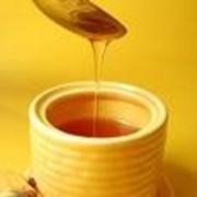 Мед монофлорный фото