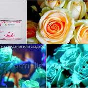 Светящаяся краска для цветов Acmelight Flower фото