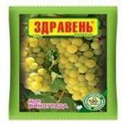 Здравень виноград турбо 150 г вх фото