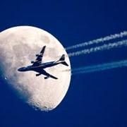 Авиабилеты по всем направлениям фото