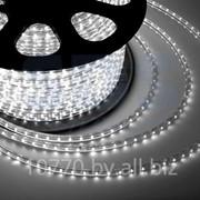 LED лента Neon-Night, герметичная в силиконовой оболочке, 220V, 13*8 мм, IP67, SMD 5050, 60 диодов/метр, цвет светодиодов белый, бухта 50 метров фото