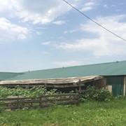 Продается ферма пл. 3500 кв.м на участке 180 га, Предгорный р-н фото