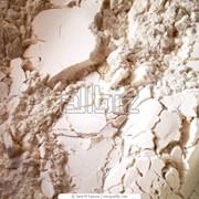 Сырье для хлебопекарного производства, Мука от производителя фото