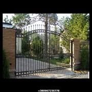 Кованые ворота №24 фото