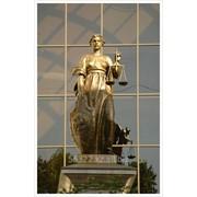 Юридические услуги для бизнеса и физических лиц. фото