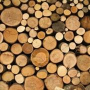 Лесоматериалы в Молдове! фото