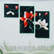 Картина по номерам Цветы на черном фоне фото