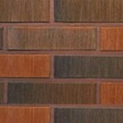 Облицовочный кирпич Terca RED FLAME шероховатый 250х85х65 фото