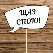 "Табличка ""Щаз спою!!!""( Арт FSC-14) фото"