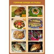 Плакат Приготовление Рыбных блюд Г.26 фото