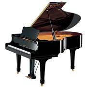 Рояль Yamaha GC1 (PE) фото