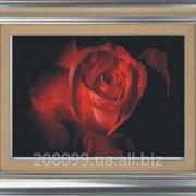 """Набор для рисования камнями """"Красная роза"""" 1009 фото"""
