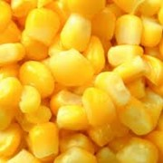 Кукуруза обыкновенная на экспорт фото