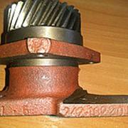 Корпус 242-1022060 привода гидронасоса НШ ЮМЗ-80 в сборе с шестернёй и подшипником ММЗ фото