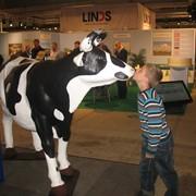 Продается действующая молочная ферма фото