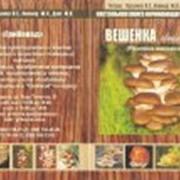 Книга настольная для начинающего грибовода фото