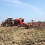 Посев зерновых фото