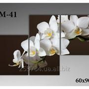 Картина модульная М-41, размер 60х90 фото