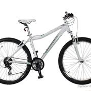 Велосипед Comanche Orinoco L фото