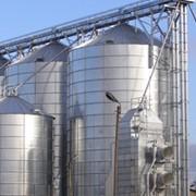 Силосы для зерна, плоскодонный силос SPA фото