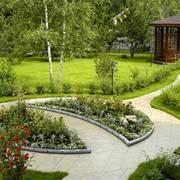Дизайн и озеленение фото