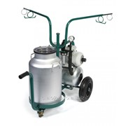Оборудование для доения в ведро для доильного зала Westfalia фото