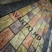 Тротуарная плитка, арт. 19 фото