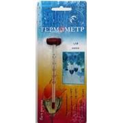 Термометр для вина фото