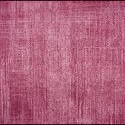Ткань мебельная Canvas Holst Jam фото