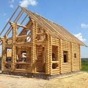 Проект дома из дерева Д0053 фото