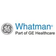 Фильтрационные материалы, оборудование для ультра-, микро-и нанофильтрации WHATMAN фото