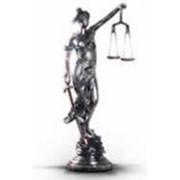 Ведение дел в хозяйственных судах, услуги арбитражного управляющего фото