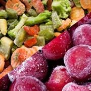 Проект цеха шоковой заморозки ягод (фруктов,грибов и овощей). фото