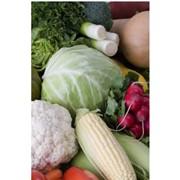 Хранение фруктов и овощей фото