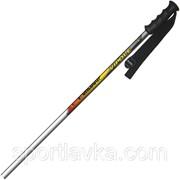 Лыжные палки Vipole Worldcup 125 921878 фото