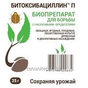 Битоксибациллин - биологический инсектицидный препарат, предназначенный для защиты сельскохозяйственных, цветочных, лесных и лекарственных культур от насекомых-вредителей фото