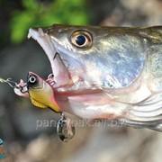 Predator-Z Lead Fish, 14g, A03 CZ4023 фото