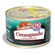 Ставрида океаническая в томатном соусе, банка №6 с ключом easy open фото