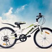 Велосипед Viva Apolon фото