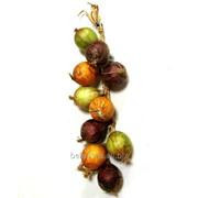 """Овощи искусственные """"Лук в связке"""" арт.12249 фото"""