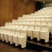 Театральное кресло Бизнес фото