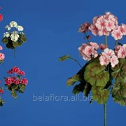 """Цветок искусственный """"Пеларгония букет"""" микс окрасок арт. AX39048 фото"""