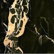 Мрамор Portoro Gold (Италия) (Уникальные камни) фото