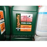 Lignofix Stabil Extra (концентрат) 5кг. Профилактика на 700 м2 древесины. фото
